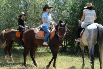 At Safari