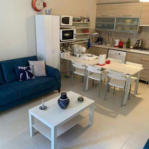 Holiday Apartment For daily and Weekly Rent #17